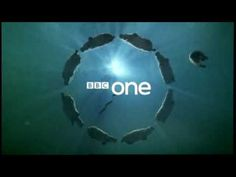 BBC Idents - Hippos - NOT to be confused with footage of Benidorm in the summer