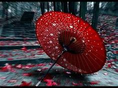 Flowers & Raindrops