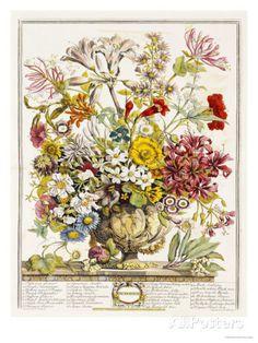 Hand Colored Engraving of Bouquet- October, 1730 Posters par Robert Furber sur AllPosters.fr