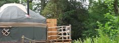 Guy Mallinson's Crafty Camping & Woodland Workshop: luxury glamping & green woodworking courses in Dorset featuring the award winning Woodsman's Treehouse Glamping Holidays, Luxury Glamping, Outdoor Gear, Woodland, Tent, Shots, Camping, Crafty, Campsite