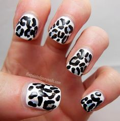 black and white leopard with holographic spots!