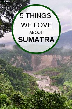 Five things we love about Sumatra, from seeing endangered orangutans in the wild to jungle treks and swimming in Lake Toba