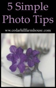 Tips for photo styling