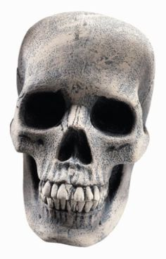 Rubies Halloween Decoration Human Skull, 8' Wide and 6' High ** Awesome product. Click the image : Garden Christmas Decorations