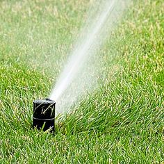 Transform your landscape with an irrigation system. This easy-to-install system is guaranteed to make your grass look great. Home Irrigation Systems, Sprinkler Irrigation, Low Maintenance Backyard, Irrigation Controller, Water Timer, Juniper Bonsai, Lawn Equipment, Soil Layers, Gardens