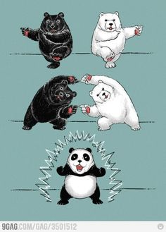 Panda Mitosis.... yep i'm a nerd... who just happens to love pandas!!!!