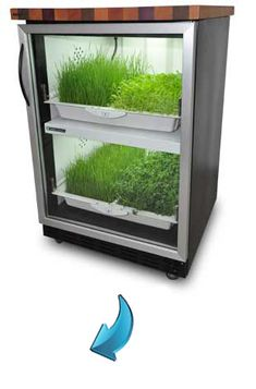 Urban Cultivator is an all in one indoor home garden. You get 365 days of perfect growing conditions for all of your favorite herbs and veggies. No more soggy super market herbs going bad in your fridge... just fresh crisp herbs from your very own garden.