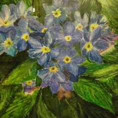 #flowers #art #pastels floral #drawing #sketch #blue #green #so #many #colours #spring