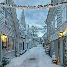 The stunning city of Stavanger in the snow, Norway Norway Winter, Winter Szenen, Winter Time, Winter Christmas, Norway Christmas, Christmas Time, Christmas Lights, Norwegian Christmas, Merry Christmas