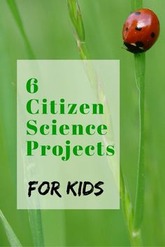 6 nature-based citizen science projects for kids.