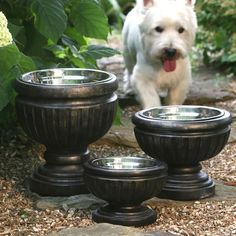 Easily made fancy dog bowls. Just need outdoor urns/planters and stainless steel dog dishes :) good way to disguise a dog bowl