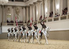 Touring one of the world's oldest and most famous riding schools, the Spanish Riding School – or Spanische Hofreitschule – in Vienna, Austria Spanish Riding School Vienna, Lippizaner, Lipizzan, Types Of Horses, Horse World, Equestrian Outfits, Equestrian Chic, White Horses, Horse Training