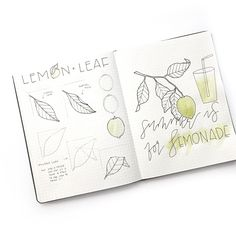"1,516 Likes, 17 Comments - Illustrator • Jennifer Reyes (@inkbyjeng) on Instagram: """"summer is for lemonade"" 〰 Drawing folded leaves used to be a mystery to me. But I have a simple…"""