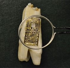 A graphene sensor effectively tattooed onto a tooth can be used to detect bacteria and so wirelessly monitor oral health, research has shown. Dental Health, Oral Health, Tooth Tattoo, Electronic Tattoo, Technology Articles, Dentistry, Inventions, Teeth, Believe