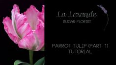How to make a gumpaste Parrot Tulip tutorial, this is part 1 which will take you through making the flower portion. Part 2 will demonstrate making the leaves...