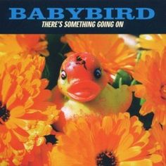 Baby Bird - Theres