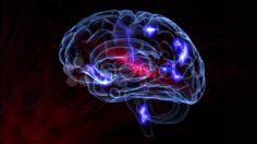 brain neurotransmitters - Stock Footage   by agusacosta
