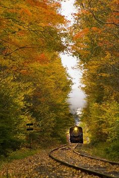 SEASONAL – AUTUMN – a scenic pathway surrounded by the brilliant colors of fall ant the railroad in middlesex, connecticutt, photo via old fashioned. Train Tracks, Train Rides, Train Trip, Beautiful World, Beautiful Places, Beautiful Scenery, Old Trains, Belle Photo, New England