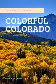 Fall colors in the Colorado Rockies with beautiful places like Aspen, the Hanging Lake, the breathtaking Maroon Bells in Aspen or the wonderful Million Dolla. Silverton Train, Celebrity Selfies, New Social Network, Hometown Heroes, Aspen Trees, Colorado Rockies, Chicago Tribune, Fall, Autumn