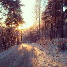Puijonlaakso 3pm, sunset #Winter
