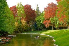 Park lake in the Shrine of Bom Jesus - Braga
