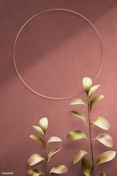 Round golden nature frame on a pink background vector Framed Wallpaper, New Wallpaper, Wallpaper Backgrounds, Tropical Background, Orange Background, Tapete Gold, Cool Art Projects, Diy Projects, Flower Frame