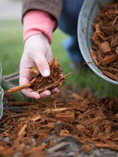Besides being just plain ugly, weeds steal nutrients from the soil and may attract insects or disease. The easiest way to prevent weeds from being an issue is to spread 2 to 3 inches of mulch over the soil. Your bulbs will easily push up through it, but most weed seeds won't.