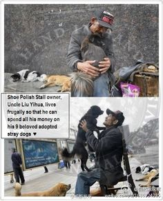 75 Year Old Shoe Polish Owner In China Lives Frugally To Look After His 9 Adopted Stray Dogs - Animal Rights Zone