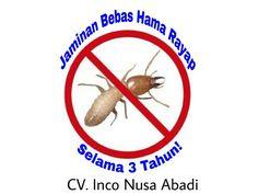 Anti Rayap (Termite Control)