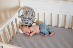 Birth Announcement Stuffed Animal - Embroidered Stuffed Animal - Baby Gift - Birth Gift for Newborn - Baby Photo Prop - Baby Announcement Lamb Pictures, Penguin Pictures, Newborn Baby Photos, Newborn Baby Gifts, Plush Animals, Baby Animals, Stuffed Animals, List Of Animals, Birth Gift