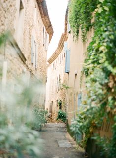 {<3}Daydreaming of Provence...