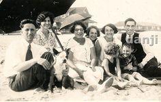 Family at The Beach Under Umbrella w Their Pit Bull Boston Terrier Dog Old Photo | eBay