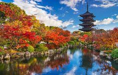 Templo Toji en Kioto, Japón | Galería de fotos 9 de 35 | Traveler