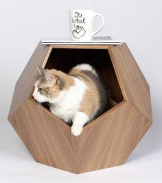 11 Cat Caves That Prove Cat Beds Can Be Stylish