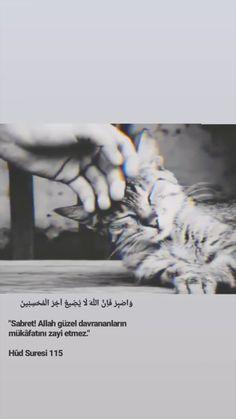 Closer Quotes Movie, Allah Islam, Funny Videos For Kids, Muslim Couples, Quran Quotes, Cool Words, Hagia Sophia, Islamic, Princess