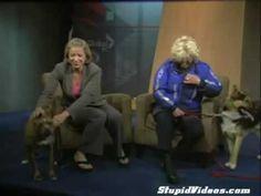 Hyperactive dog ruins adoption