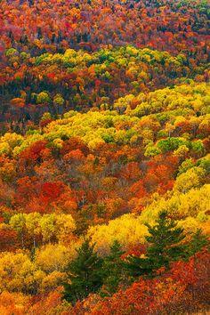 Timmy Abell • sublim-ature:   Upper Peninsula, Michigan adonyvan