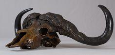 Handmade Cape Buffalo scull 2