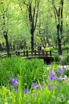 Daegu Arboretum South Korea Nature  Travel / Photography Tamron  / Nikon