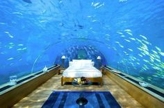The Underwater Aquarium Bed #Chiardilunamaterassi