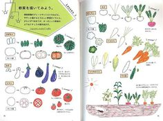 Illustration Book for a Ball-point pen - Japanese Drawing Book - 4 flowers - Kawaii Drawings, Doodle Drawings, Easy Drawings, Doodle Art, Pen Illustration, Illustrations, Pen Doodles, Ballpoint Pen Drawing, Japanese Drawings