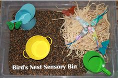 We just love sensory bins! They create a fabulous opportunity for exploring and learning through play! Here are a few spring themed bins you might consider exploring with your kiddos - some are. Nature Activities, Spring Activities, Sensory Activities, Preschool Activities, Sensory Tubs, Sensory Boxes, Sensory Play, Sensory Therapy, Bird Life Cycle