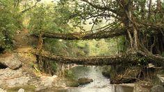 pont de racines deux étages