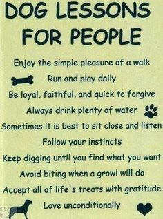 I definitely try and live by the doggie code