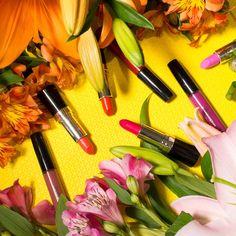 maquiagem, batom, Mahogany, makeup, flor, primavera