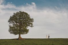 love the composition. old tree and newly wed.