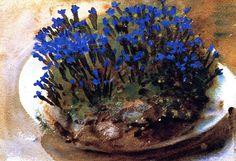 """john singer sargent blue geranium   Genziane blu"""", acquerello di John Singer Sargent (1856-1925, Italy)"""
