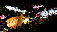 2014서울빛초롱축제 -bykeeney