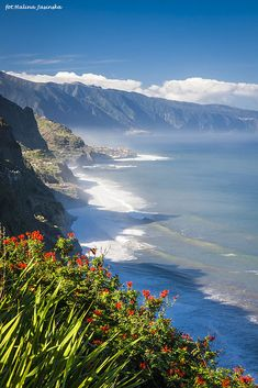 """jasilak: """" Madeira, Portugal Halina Jasińska Copyright © 2016 You can support… Funchal, Places Around The World, The Places Youll Go, Places To See, Around The Worlds, Portugal Travel, Spain And Portugal, Beautiful World, Beautiful Places"""