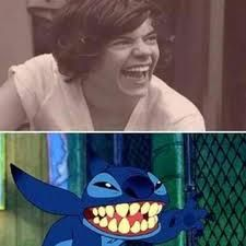haha Harry Styles harry styles